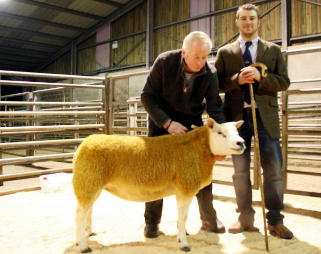 Texel champion and sale leader from Peter Woof pictured with the judge, Tom Pateman