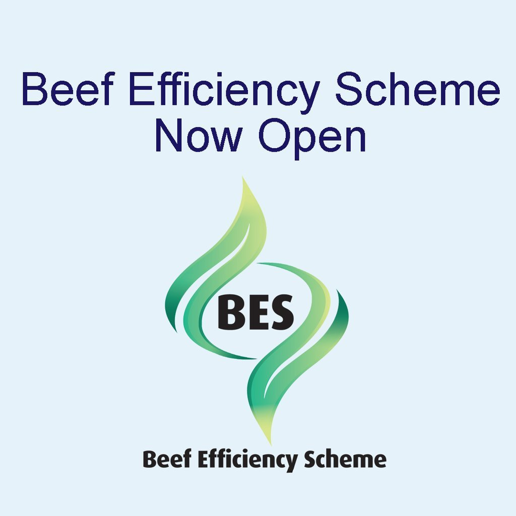 Beef Efficiency Scheme