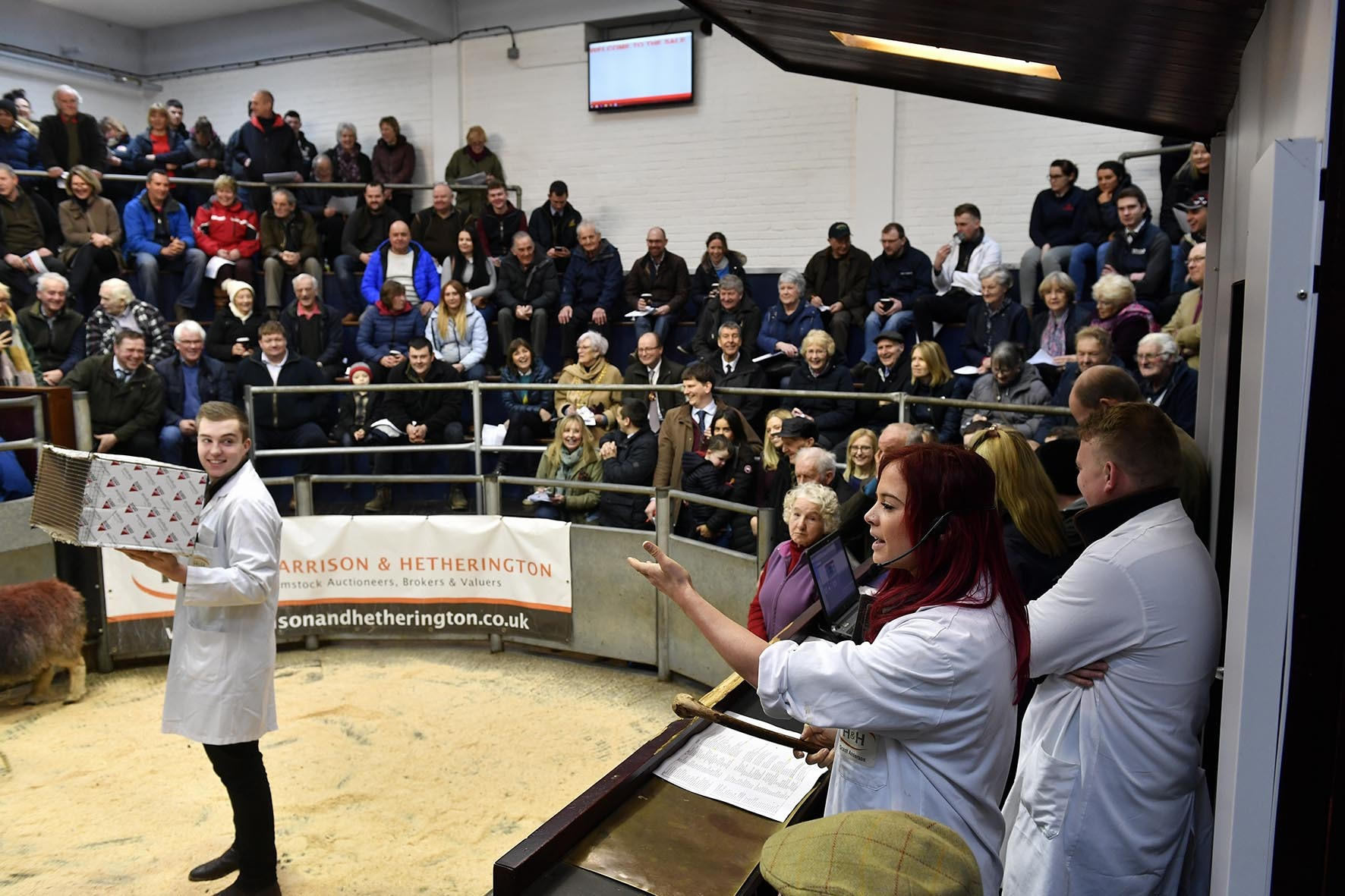 Farmers' Charity Auction at Borderway Mart, Carlisle with guest auctioneer Hannah Jackson