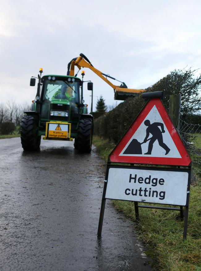 Hedgecutting - get it done before the end of February