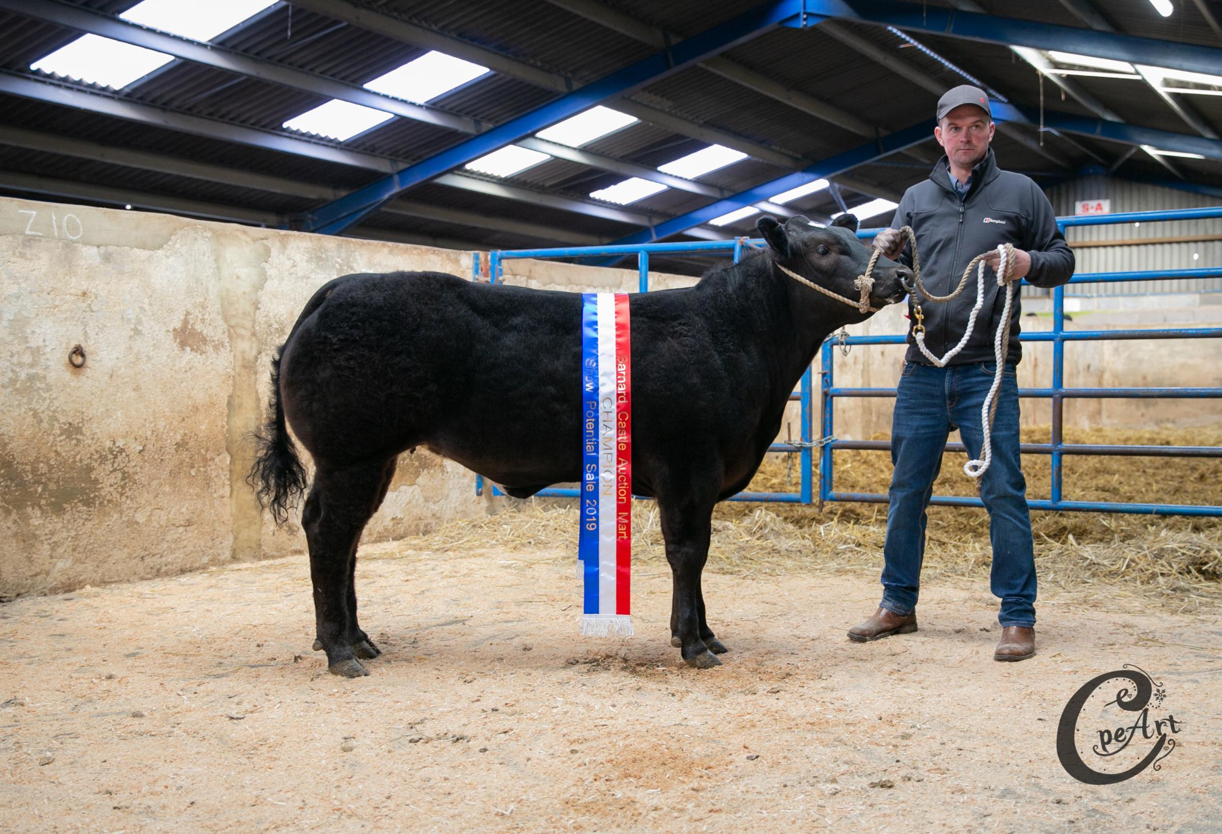 Limited Edition sold for a centre record of £6600 for Valley Farm