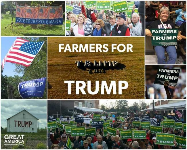 US farmers are generally pro-Trump, because he aggressively promotes their exports