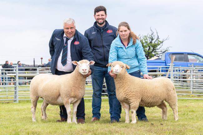 Scottish Dorset Sheep club new office bearers from left, Dennis Rankin (vice chairman), Alistair Morton (chairman) and Marianne Sheed (secretary/treasurer)  Ref:RH080619133  Rob Haining / The Scottish Farmer.